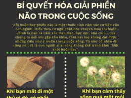 phien nao cuoc song