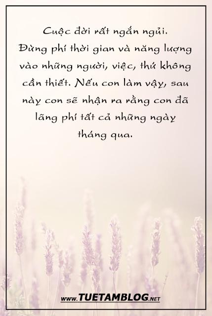 Những câu nói sâu sắc đáng suy ngẫm về cuộc đời
