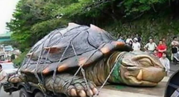 Rùa biển sa lưới 'vươn cổ cúi lạy', ông chủ bèn mua rồi phóng sinh, 16 năm sau chú rùa quay lại trả ơn