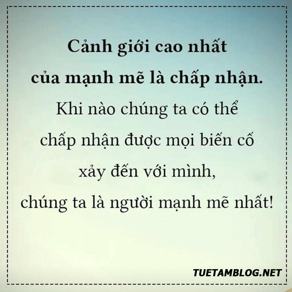 song manh me
