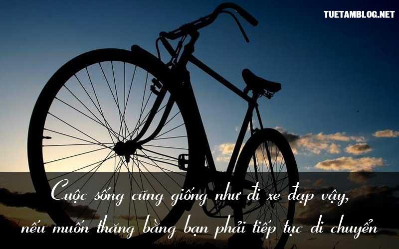 Cuộc sống cũng giống như đi xe đạp vậy, nếu muốn thăng bằng bạn phải tiếp tục di chuyển.