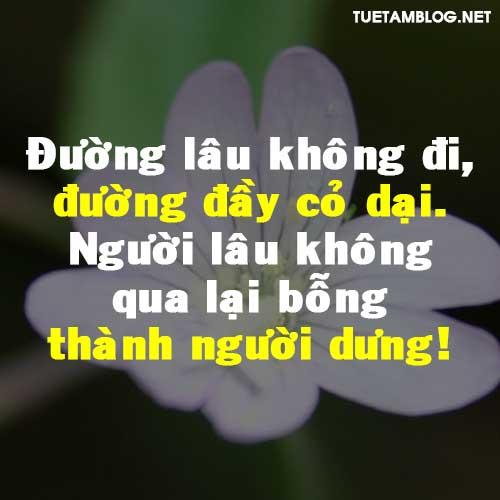 duong-lau-khong-di-duong-day-co-dai