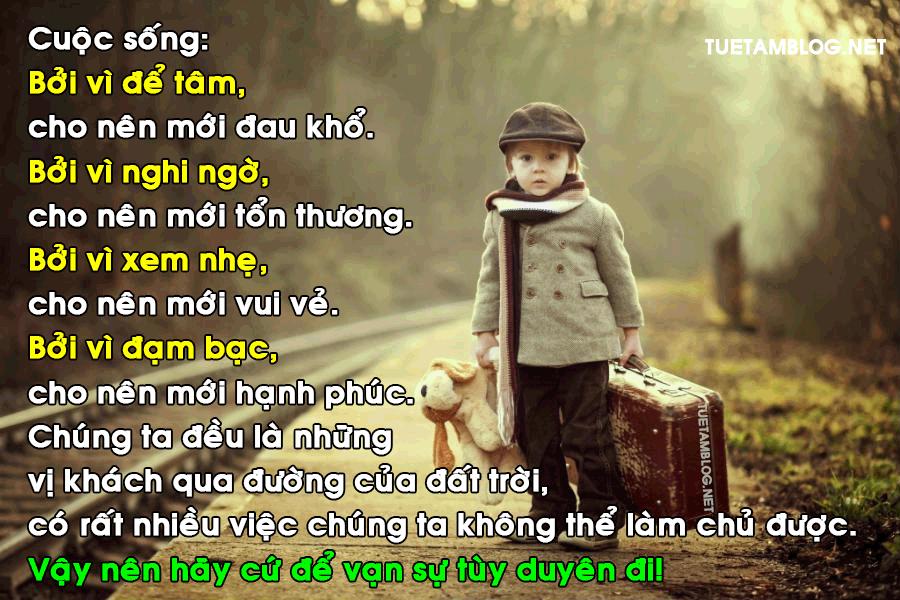 nhung-cau-noi-giup-ban-lay-lai-can-bang-va-song-an-nhien-hon-04