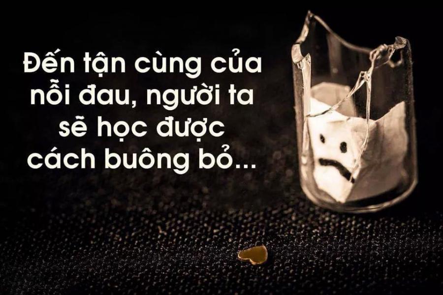hoc-cach-buong-bo-tu-3-cau-chuyen-cua-su-thay-buong-bo