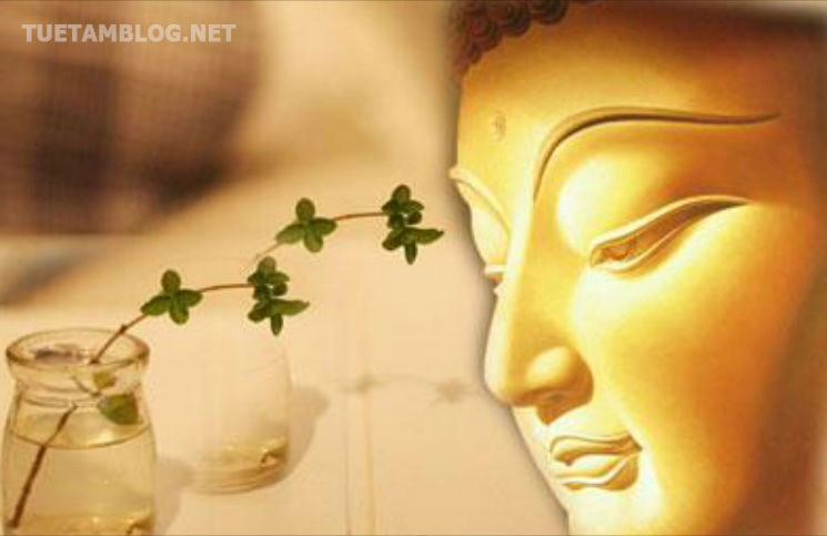 loi-phat-day-song-hanh-phuc-an-nhien-moi-ngay-tuetamblog