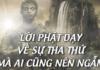 loi phat day ve su tha thu tuetamblog