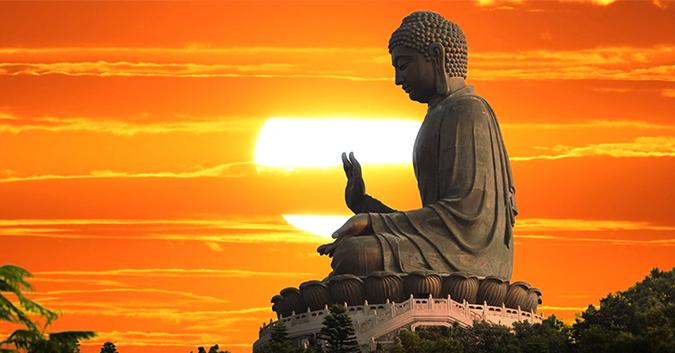 loi -phat-day-ve-ta-kien-dau-kho-01
