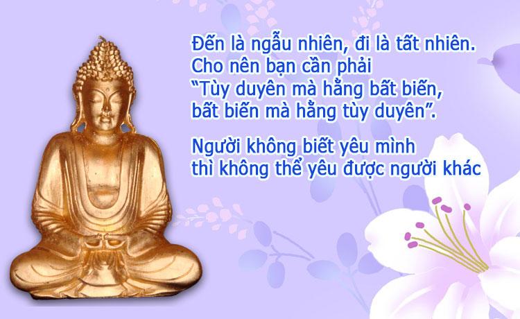 loi-phat-day-yeu-cung-phai-hoc-yeu-la-phai-thuong-tuetamblog