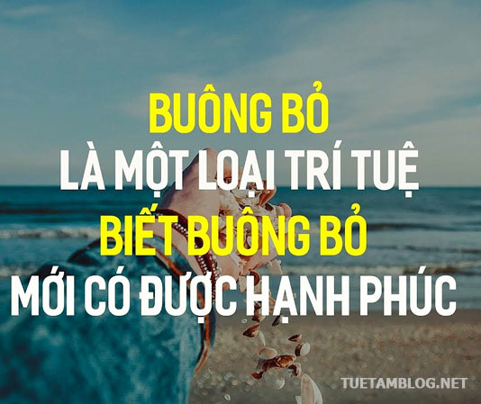 phat-day-buong-bo-de-hanh-phuc-tuetamblog