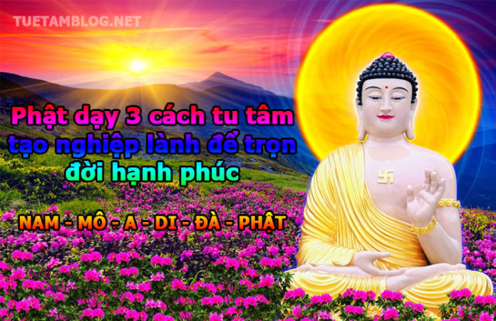 phat-day-cach-tu-tam-tao-phuoc-lanh-tuetamblog