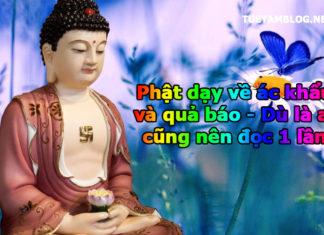 phat-day-ve-ac-khau-va-qua-bao
