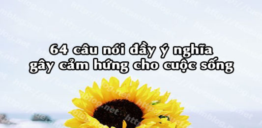 64-cau-noi-day-y-nghia-gay-cam-hung-trong-cuoc-song
