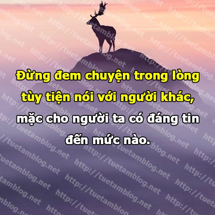 Đừng đem chuyện trong lòng tùy tiện nói với người khác, mặc cho người ta có đáng tin đến mức nào.