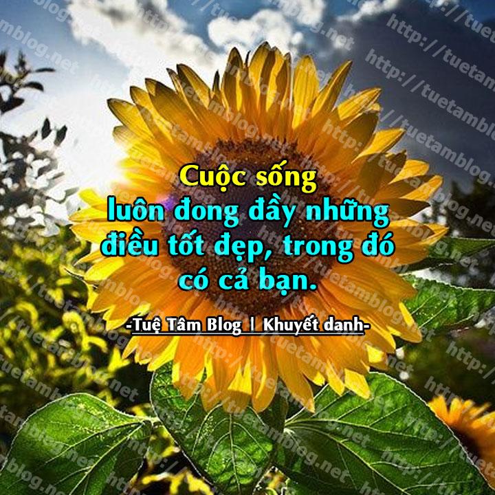 cuoc-song-luon-dong-day-nhung-deu-tot-dep