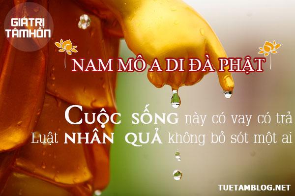 phat-day-ve-nhan-qua-hai-nguoi-hai-minh