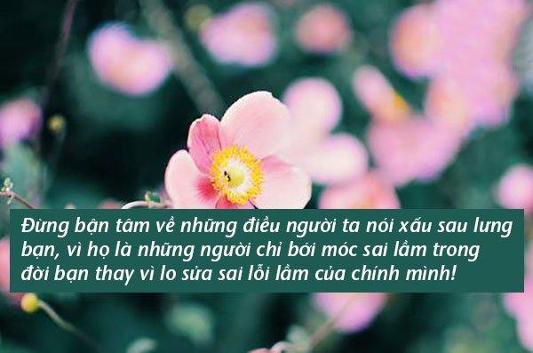 Đừng giận khi có kẻ nói xấu bạn, vì vị trí của họ mãi mãi chỉ ở sau lưng bạn mà thôi