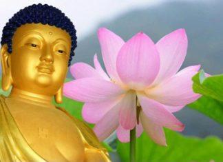 Phật dạy: Đại họa có thể biến thành đại phúc nếu con người làm được điều này