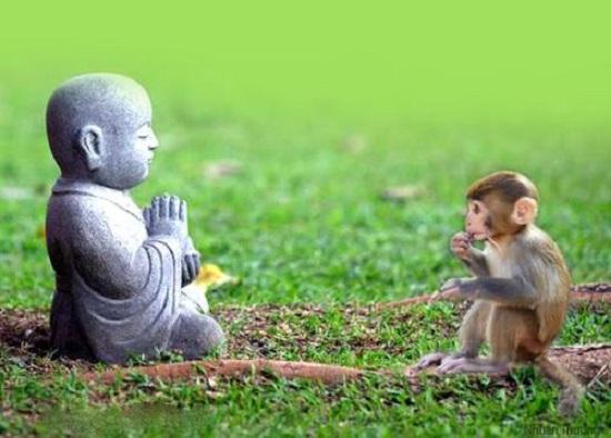 Một lần tha thứ là một lần tích phúc, bao dung càng lớn phúc đức càng dày