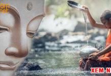 Nước chảy 3.000 dặm cũng chỉ cần một gáo để uống, cả đời cớ sao phải truy cầu?