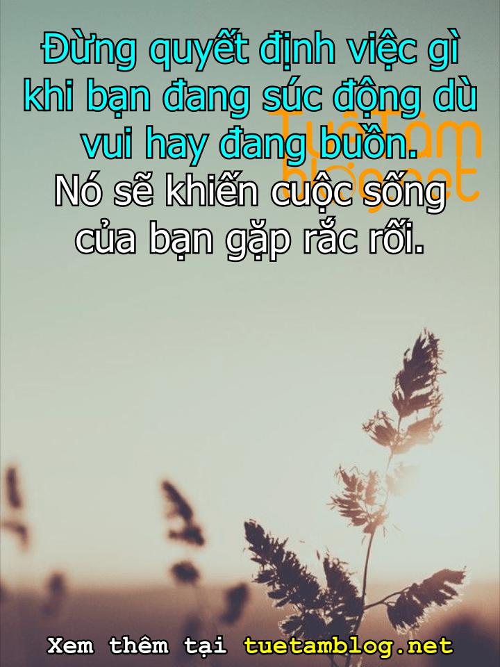 Đừng quyết định việc gì khi bạn đang súc động dù vui hay đang buồn. Nó sẽ khiến cuộc sống của bạn gặp rắc rối.