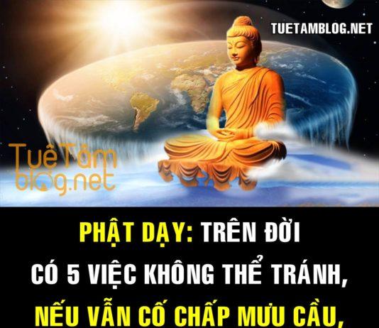 Phật dạy: Trên đời có 5 việc không thể tránh, nếu vẫn cố chấp mưu cầu, sẽ chết trong muộn phiền